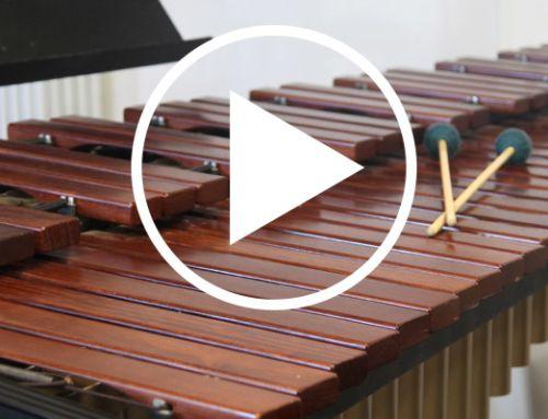 Découvrez les professeurs de l'école de musique